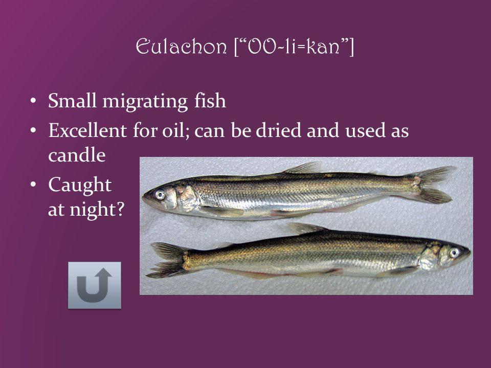 Eulachon [ OO-li=kan ]